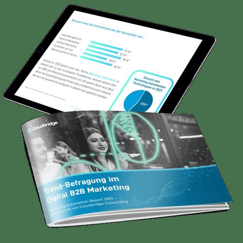 Marketing Automation Report 2021 Mockup
