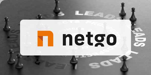 Logo der netgo Group