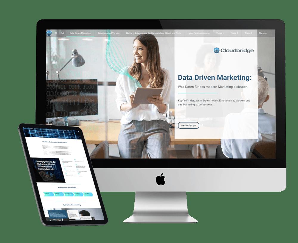 Ebook Data Driven Marketing